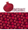 red simple pomegranate pattern vector image vector image