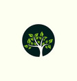 tree oak ecology circle creative business logo vector image vector image
