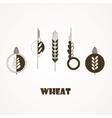 wheat ear icon set vector image