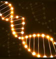 abstract spiral of dna neon molecular background vector image vector image