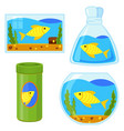 colorful cartoon fish elements set vector image