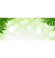 green tropical leaves borde with bokeh vector image