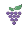 stylized grapes wine design element for organic vector image