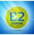Vitamin B2 icon vector image vector image