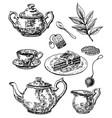 ink hand drawn sketch style tea set vector image