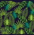 nice and exotic leaves of plants background vector image vector image