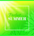 perfect summer banner with typographic design vector image vector image