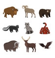 set of wild animals from north america isolated on vector image