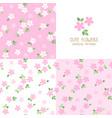 set seamless pink flower patterns vector image