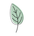 Watercolor silhouette of leaf plant vector image