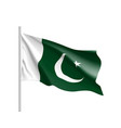 pakistan flag flat style vector image