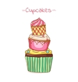 beautiful pyramid of cupcakes vector image vector image
