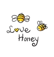 Bee Love honey vector image vector image