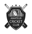 cricket amater club vector image vector image