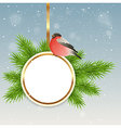 Green fir branch and bullfinch vector image vector image