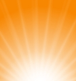 Sun Sunburst Pattern vector image
