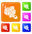 anaconda snake icons set color vector image vector image