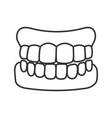 dentures linear icon vector image vector image