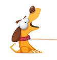 funnu cute crazy yellow dog vector image vector image
