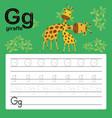 g giraffe alphabet tracing worksheet for prescho vector image vector image
