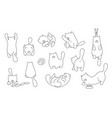 set cats playing line design domestic cute cat vector image