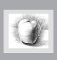 with a pencil sketch apple for your creativity vector image vector image