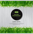 green grass border has a white wood background vector image