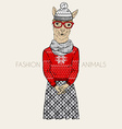 Alpaca hipster dressed up in winter jacquard vector image vector image