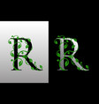 elegant r letter icon with luxury green leaf logo vector image vector image