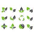 green leaves design icons vector image