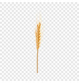 natural wheat icon realistic style vector image