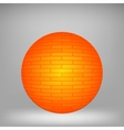 Orange Sphere vector image vector image
