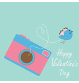 Photo camera with flying bird Happy Valentines Day vector image vector image