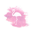 silhouette flamingo on pink watercolor spot vector image