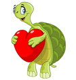 turtle with heart vector image