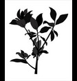 black shadows from branches and leaves vector image vector image