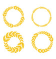 circle ornament golden laurel frame vector image