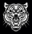 head mascot tiger isolated on black vector image