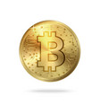 realistic bitcoin symbol digital pattern vector image