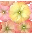 seamless primula flowers pattern vector image vector image