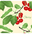 seamless texture cherry leaves and branch vector image vector image