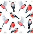 Watercolor bullfinch bird pattern vector image vector image