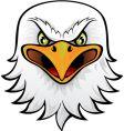 eagle head vector image