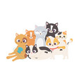 cat with wool ball and kittens mascot feline vector image