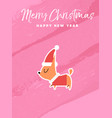 christmas and new year holiday chihuahua dog card vector image vector image