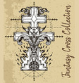 fantasy cross with cat vector image vector image