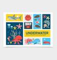flat underwater world infographic concept vector image