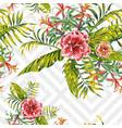 hibiscus leaves brumeliad pattern vector image vector image