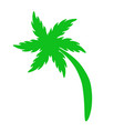 palm tree plant nature summer icon flat and vector image vector image
