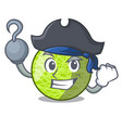pirate fresh melon isolated on character cartoon vector image